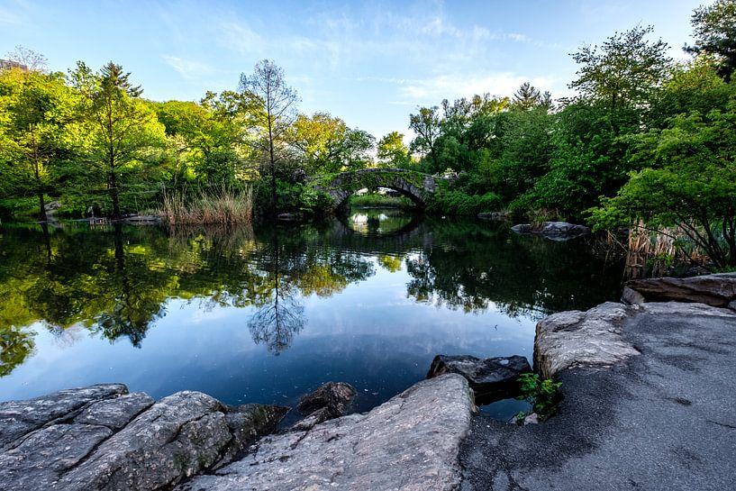Central Park New York City van Eddy Westdijk