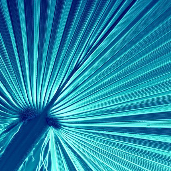 Blau van Violetta Honkisz