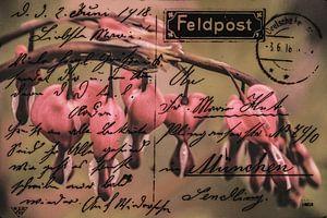 Field Post juni 1918