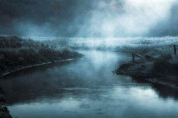 Nocturnal Spirits. van Inge Bovens