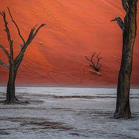 Ingesloten door machtige duinen. van Joris Pannemans - Loris Photography