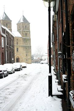 Basiliek in besneewde straat van Sanne Custers