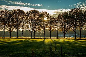 Holländische Landschaft von Helga van de Kar