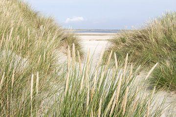 Dwalen door de duinen van Hilda Weges