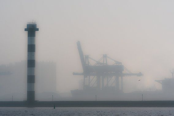 Maasvlakte, Hoek van Holland / Rotterdam