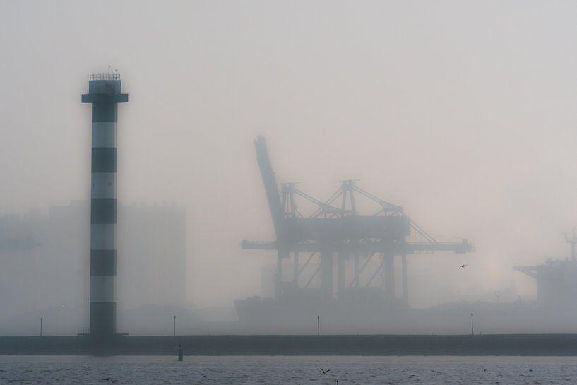 Maasvlakte, Hoek van Holland / Rotterdam van Eddy Westdijk