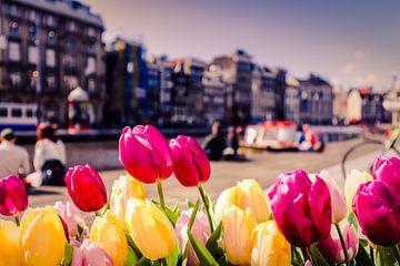 Tulpen in Amsterdam mit undeutlichem Hintergrund von Kim Bellen