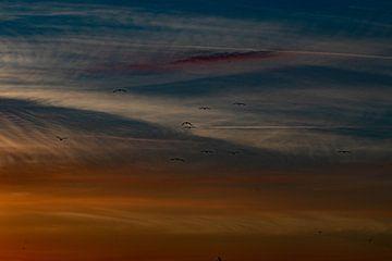 Abstract beeld van een gekleurde lucht van Anne Ponsen