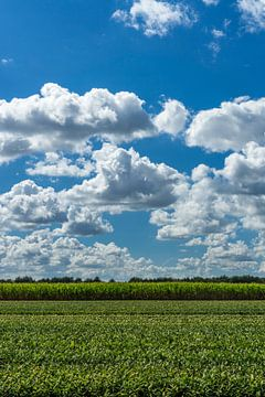 Intense wolkenlucht van Joost Potma