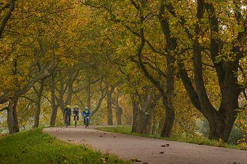 Wielrenners fietsen op de Notendijk van Moetwil en van Dijk - Fotografie