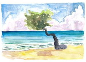 Tropischer Eagle Beach in Aruba Niederländische Karibik von Markus Bleichner