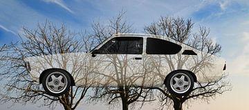 Opel Kadett C on 3trees von aRi F. Huber