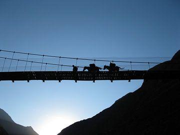 Ezels op een brug in Peru  van Bart Muller