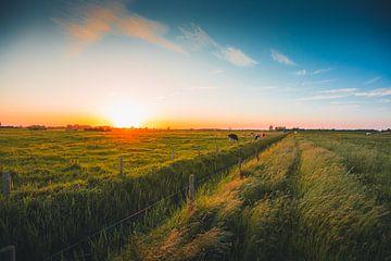 Walcheren zonsondergang von Andy Troy