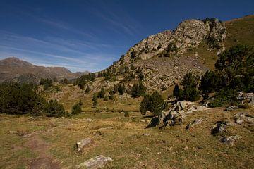 Zomer in de berglandschappen van de Pyreneeën von Paul Wendels