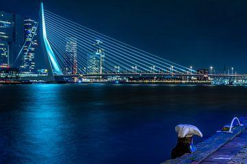 Die Eurasmus-Brücke von Olga Drop