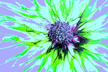 Bloem/Flower/Blume/La fleur van Joke Gorter