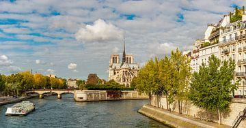 Paris Notre Dame von davis davis