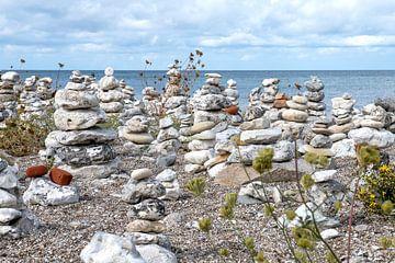 steenmannetjes aan de kust van Denemarken sur Hanneke Luit