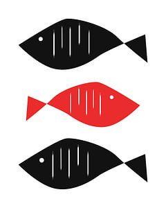 Moderne Fische von Patrycja Polechonska