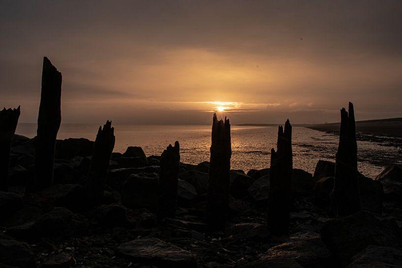 lever du soleil Escaut oriental sur Marjolein Albregtse