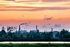 Zonsondergang in de Biesbosch van