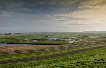 Polderlandschaft von Hans Heemsbergen