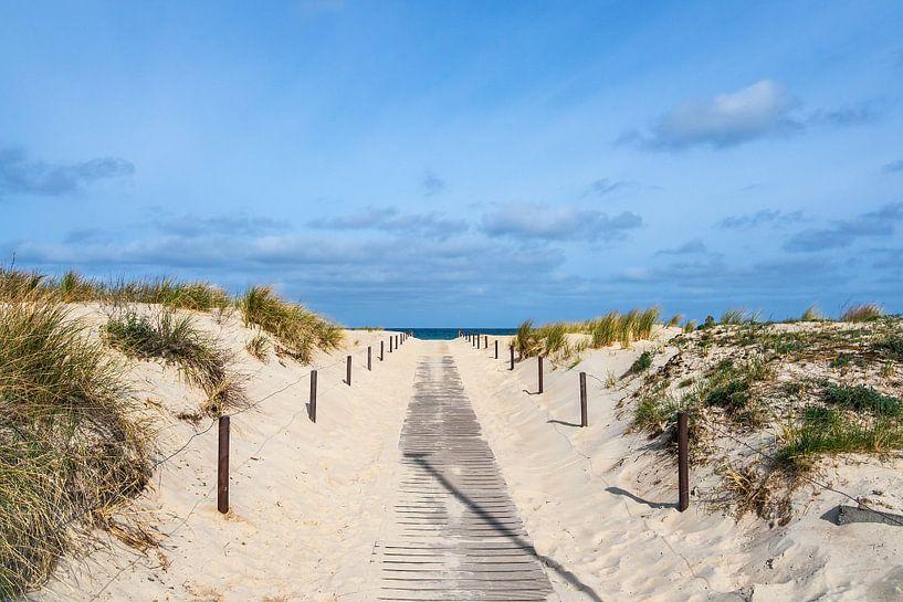 Strandaufgang an der Küste der Ostsee in Warnemünde von Rico Ködder