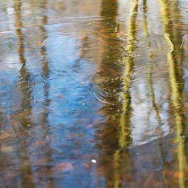 weerspiegeling in ijs van Jeannette Kliebisch