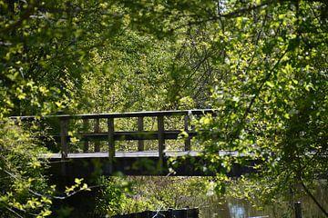 Eenzame brug in het bos  von Mandy M