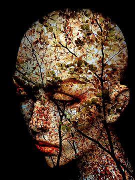 The autumn in mind van Gabi Hampe