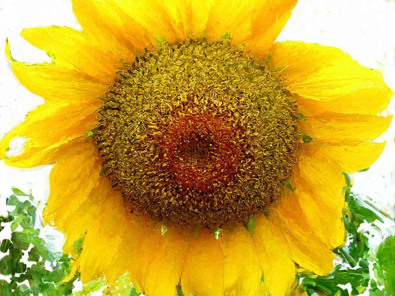 Zonnebloem van Frans Jonker
