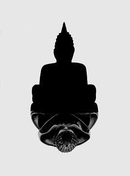 Schaduw Boeddha van Alexander Dorn