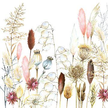 Droogbloemen en pampasgrassen van Geertje Burgers