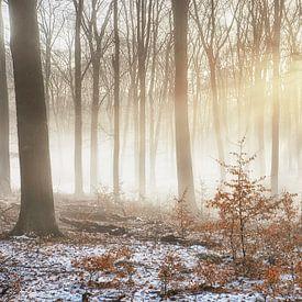 Nebel über schmelzendem Schnee von Cor de Hamer
