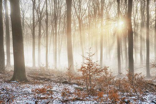 Mist over smeltende sneeuw van Cor de Hamer