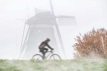 Fietsend in de polder van Arjen Roos
