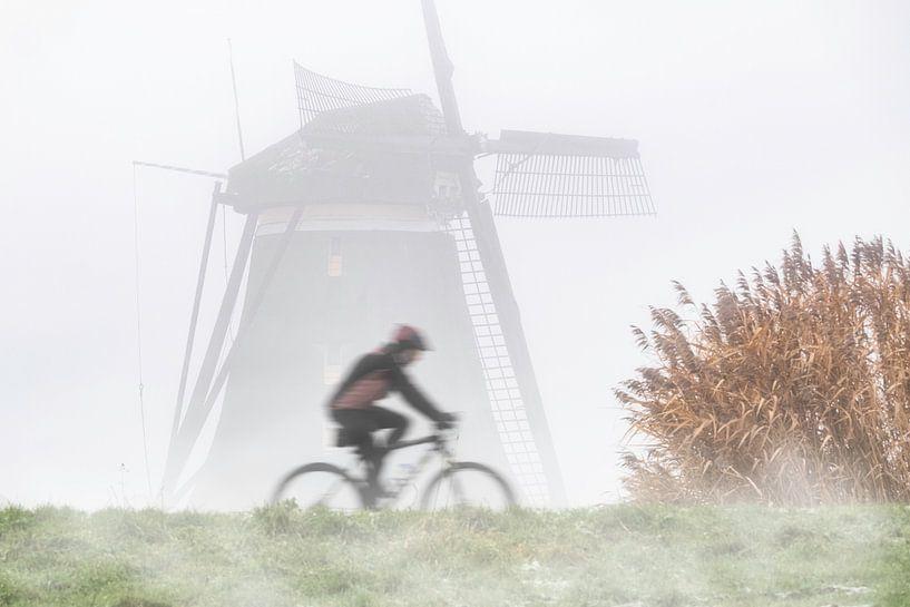 Radfahren im Polder von Arjen Roos
