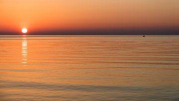 visser bij zonsopgang von B-Pure Photography