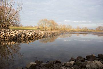 hollands landschap in de herfst von Bernadet Gribnau