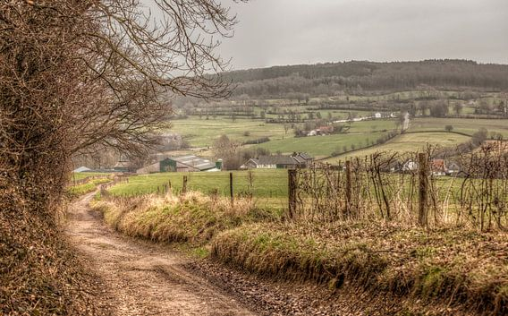 Limburgs Landschap bij Epen van John Kreukniet