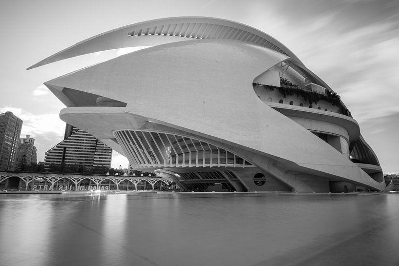 Calatrava Valencia Black & White van Arthur Scheltes