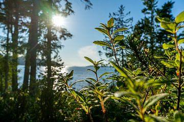 Canada Vancouver Landscape van Mike Van Zijderveld