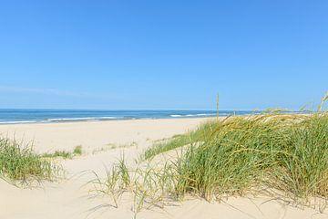 L'été à la plage sur Sjoerd van der Wal