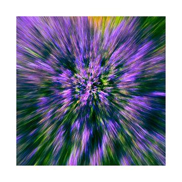 Zoom blur photography van Mirna!  Fotografie