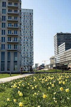 Architecture Anvers sur Tine Schoemaker