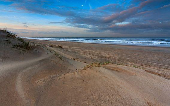 Golvend zand in het ochtendlicht