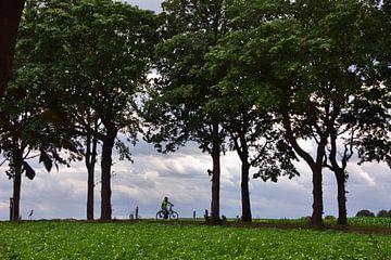Radfahrer von Edgar Schermaul