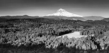 Panorama von Mount Hood in Schwarz-Weiß von Henk Meijer Photography