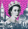 Crowning glory, 2015, (screen print) van Anne Storno thumbnail